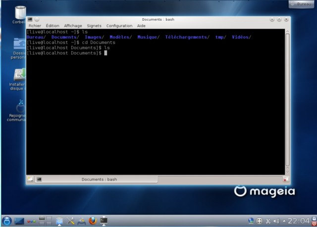 Console Mageia